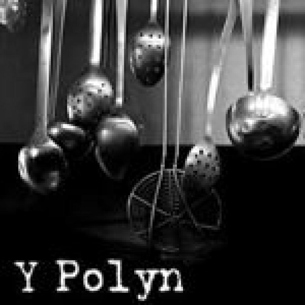 Y Polyn, Nantgaredig